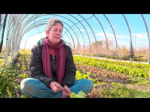 Organic Farmer in Manhattan, IL says IE has benefited her as she feels great on less sleep