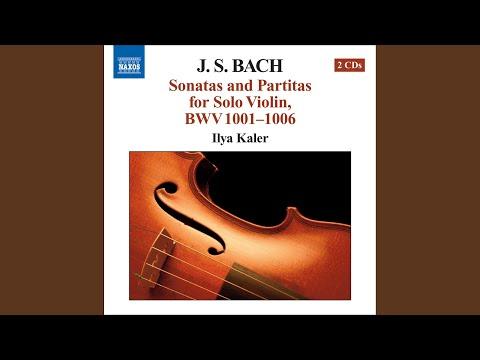 Violin Sonata No. 3 In C Major, BWV 1005: III. Largo