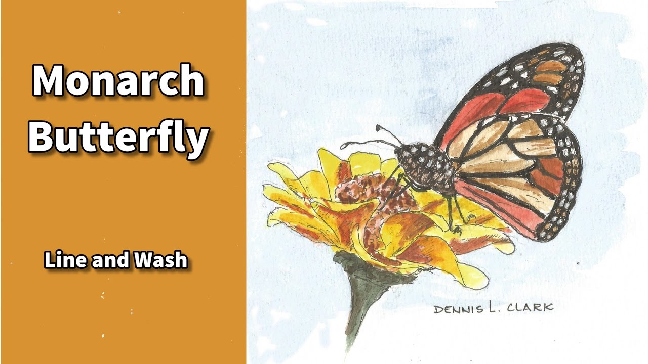 line and wash watercolor painting tutorial pen and ink monarch