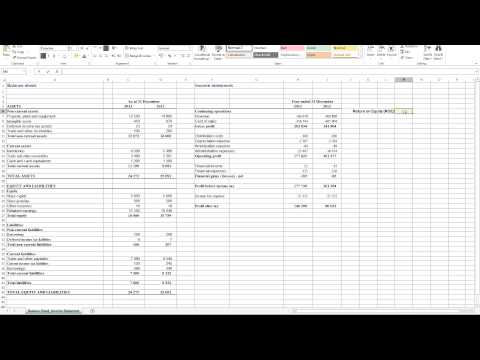 Calculating Return on Equity (ROE) in Excel