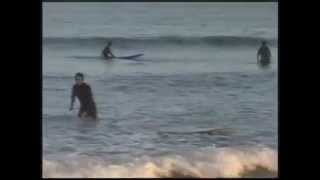 Funny Video About Learning to Surf