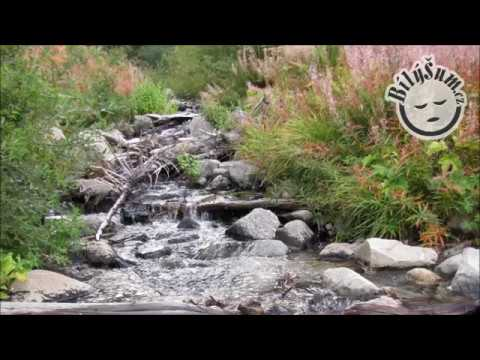 zvuk tekoucí vody mp3 ke stažení
