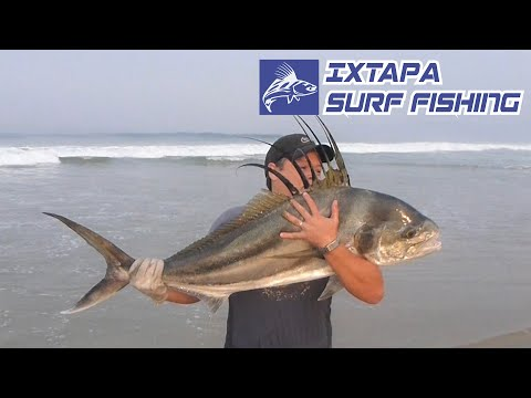 Pesca de Pez Gallo / Roosterfish - Pesca de Playa Videos De Viajes