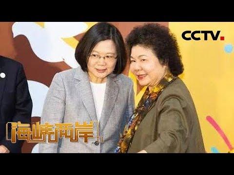 《海峡两岸》内斗升级 民进党有人要出走 20190415 | CCTV中文国际