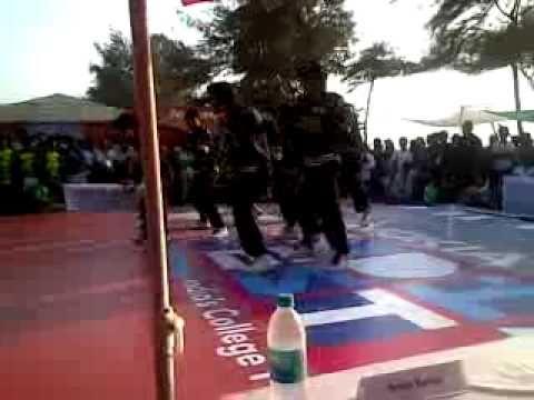 Street Soul dance Crew of HR coll - [V] IndiaFest 2011