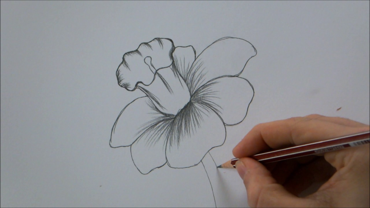 How To Draw A Flower Step By Step In 6 Minutes Youtube