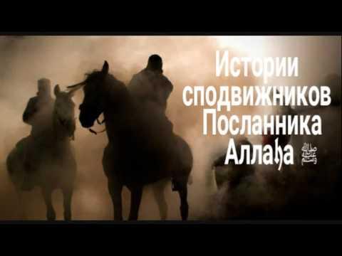 История Сподвижников (