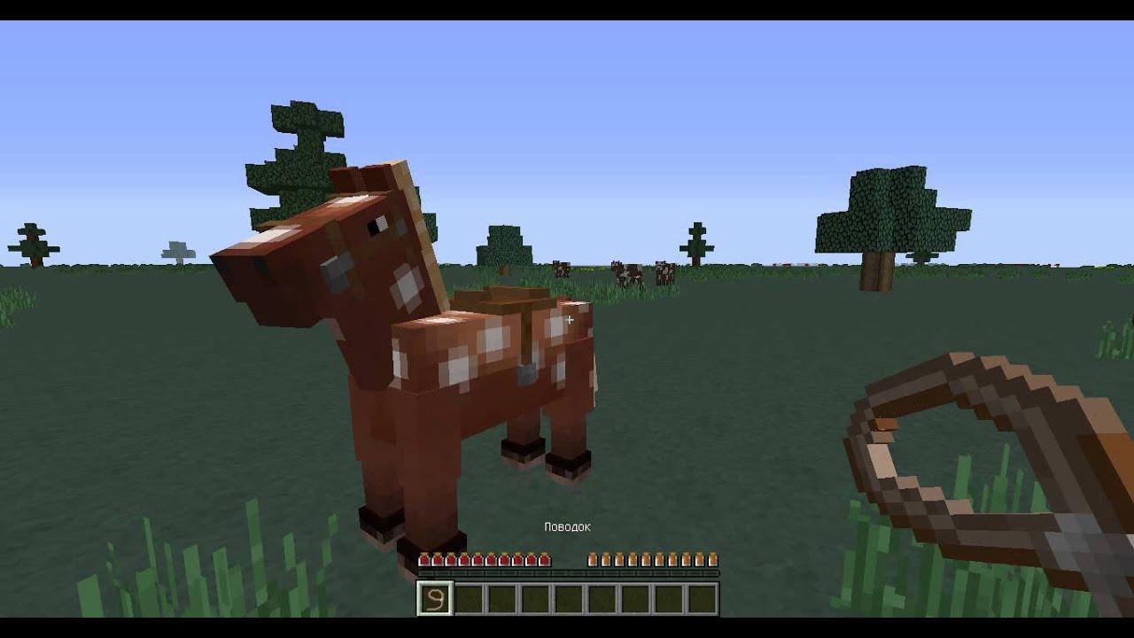 как приручить оседлать лошадь в майнкрафте #9