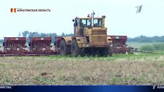 Посевная в Казахстане под угрозой срыва