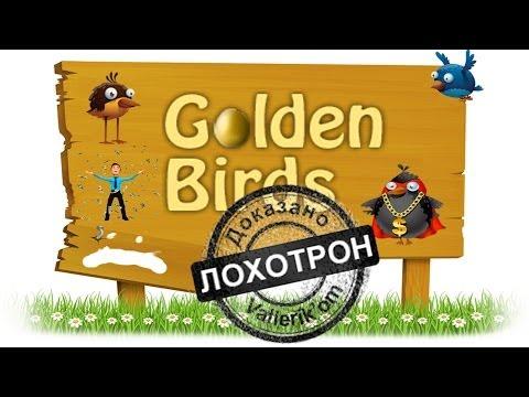 Лохотроны в интернете #Golden Birds - лохотрон?