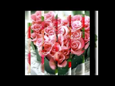 Best Valentine's Day Flowers, Valentines Day 2014 Roses