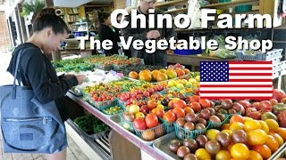 Chino Farm, California - Highest Quality Produce