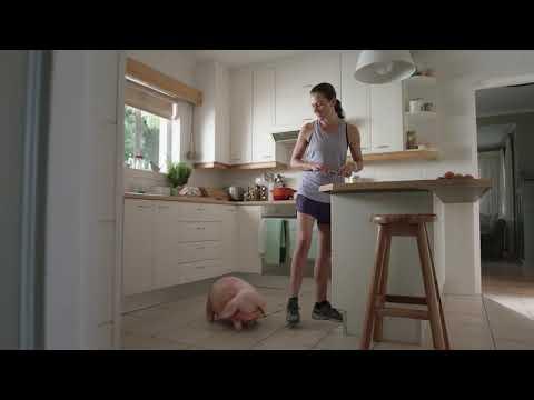 The Marathon Commercial - Santander Bank - 60 Second TV Spot