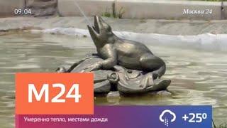 Туристы в Краснодарском крае начали платить курортный сбор - Москва 24<