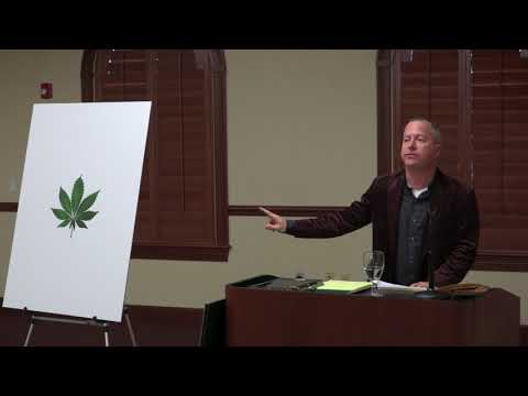 Cannabis Laws in Florida: Where We Are Now and Where We Are Headed