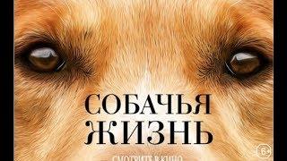 Калуст советует фильм Собачья жизнь .