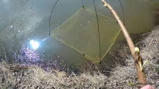 Пошел за рыбой а поймал раков. Рыбалка на подъемник. 13 апреля 2019