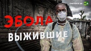 Эбола. Выжившие