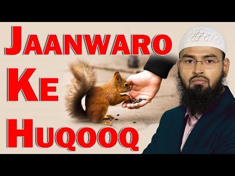 Jaanwaro Ke Huqooq - Animal Rights in Islam By Adv. Faiz Syed