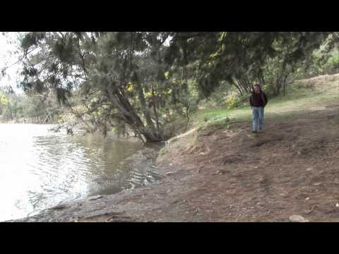 True tales of the Trout Cod - Central Murray Part 2 HD.wmv