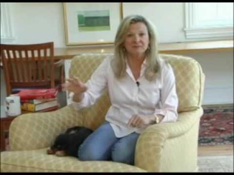 Lisa Scottoline: The Writing Life