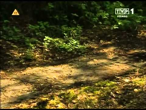 CIA i Naziści - film dokumentalny. Lektor PL from YouTube · Duration:  44 minutes 14 seconds