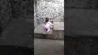 Catarina subindo escada...