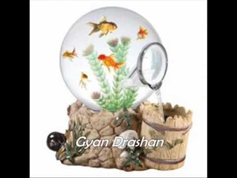 घर में Fish Aquarium है तो इन बातों का ध्यान रखें   Ghar Mein Machli Hai to Kya Kare