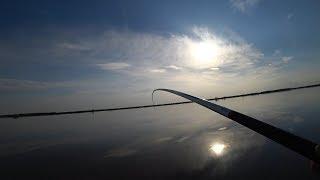 Рыбалка 2019. Лучшая Насадка на Карася. Ловля карася весной на поплавочную удочку
