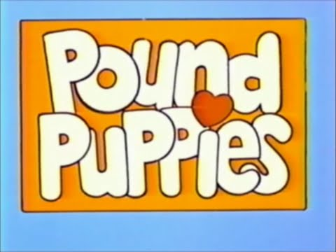 Pound Puppies Episode 1 Bright Eyes, Come Home