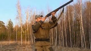 Охота на вальдшнепа - основы, советы начинающим