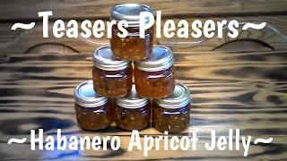 Canning Habanero Apricot Jelly