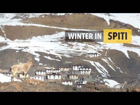 Winter in Spiti - 4K