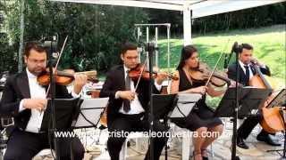 Baixar Bach - Brandenburg - Concerto No. 3 | Monte Cristo Coral e Orquestra