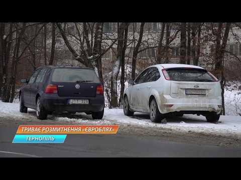 TV-4: З початку  року Тернопільська митниця ДФС оформила 800 транспортних засобів
