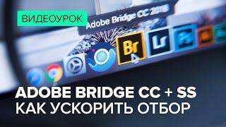 adobe Bridge и StockSubmitter за 10 минут: мой рабочий процесс от съемки до приемки на Shutterstock