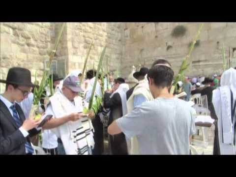 The Meaning Of The Word Hosanna In The Jewish Liturgy Sukkot The