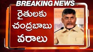 రైతులకు చంద్రబాబు వరాలు   ChandraBabu Naidu About Corn Farmers   TDP   NCBN   MODI   TeluguInsider
