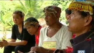 to the banwaon tribe in agusan del sur man can never own a tree