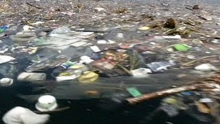 Rio de Janeiro: Water quality causes a stink ahead of Olympics