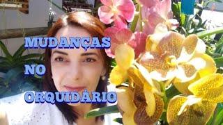 Download MEU ORQUIDARIO! MINI VANDARIO! VEJAM O RESULTADO!🙏🌿🌷💐🌻🌺💕💮💖🙋🏼♀️🌷❤️