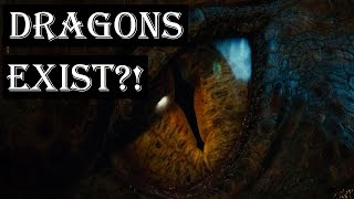 Dragons Exist?! | The Draconic Path