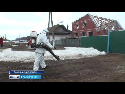 В Бакалинском районе обсудили меры по профилактике птичьего гриппа