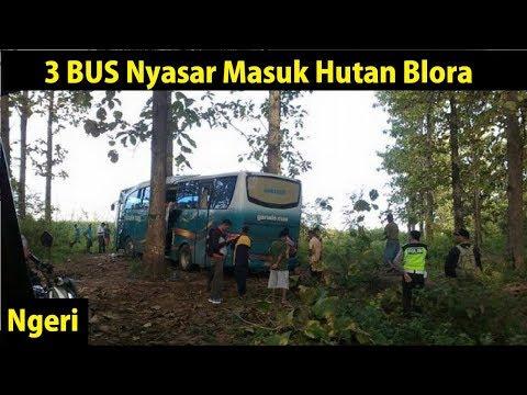 3 BUS Nyasar Masuk Hutan Blora Jawa Tengah