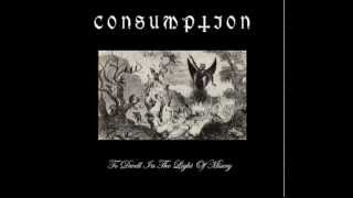 Consumption   To Dwell in the Light of Misery FULL ALBUM