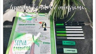 HAZ APUNTES BONITOS SIN LETTERING - ¿Cómo hacer un infograma? / karlasnotes
