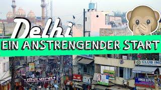 DELHI - Meine Nerven liegen BLANK! | #2