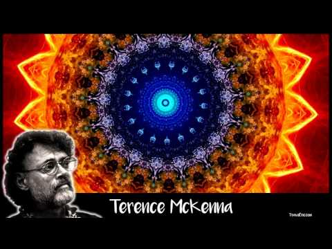 Terence McKenna  The Most Important Work to be Done