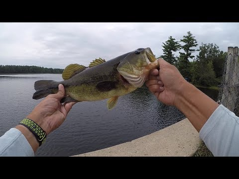 Bass Fishing In North Central Michigan