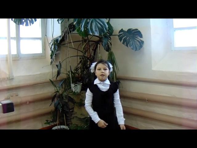 Изображение предпросмотра прочтения – ЗаринаМамбетова читает произведение «Детская (Палочка-выручалочка…)» В.Я.Брюсова